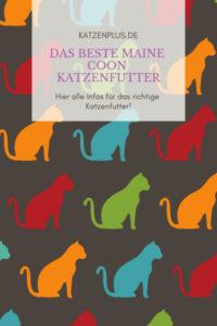 Alle wichtigen Infos für die richtige Katzennahrung findest du hier!